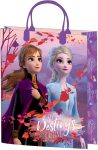 Disney Frozen Gift bag 32x27x10 cm