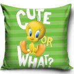 Looney Tunes Pillowcase 40*40 cm
