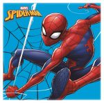 Spiderman Magic towel 30*30 cm