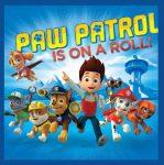 Paw Patrol Magic towel 30*30 cm