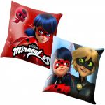 Miraculous Ladybug Pillow, Cushion 40*40 cm