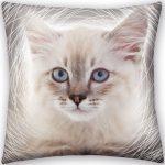 The Cat Cushion 40*40 cm