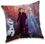 Disney Frozen Pillow, Cushion 40*40 cm