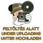 Disney Princess Plastic 3D Soup Plate